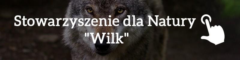 1% podatku - Stowarzyszenie dla Natury Wilk