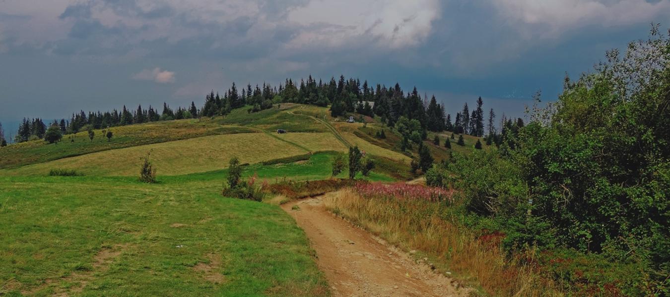 Filozofia podróży: Umysł wmałym palcu unogi